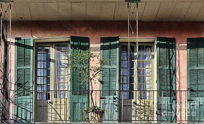Photograph - Shutters And Railings by Steven Parker