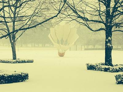Photograph - Shuttlecock In The Snow by Michael Oceanofwisdom Bidwell