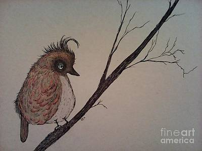 Drawing - Shy Bird by Ginny Youngblood