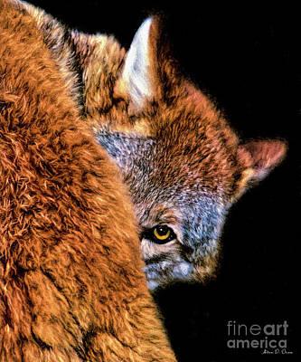 Digital Art - Shy Cyote by Adam Olsen