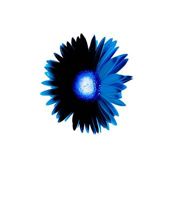 Daisies Photograph - Shy Daisy In Bright Blue Design by Heather Joyce Morrill