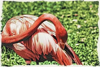 Photograph - Shy Flamingo by Alice Gipson