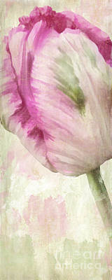 Still Life Royalty-Free and Rights-Managed Images - Shy I by Mindy Sommers