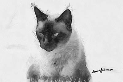 Black And White Cat Digital Art - Siamese Cat by Anthony Caruso