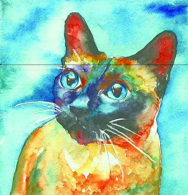 Cat Painting - Siamese Cat by Christy  Freeman