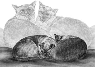 Drawing - Siamese Cat Siesta by Kelli Swan