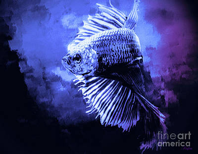 Siamese Fighting Fish Art Print