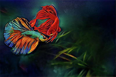 Betta Splendens Painting - Siamese Fighting Fish by Russ Harris