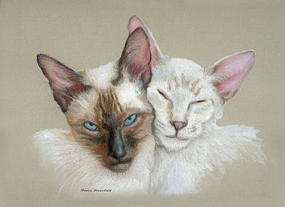 Drawing - Siamese If You Please by Mamie Greenfield