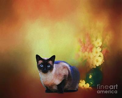 Digital Art - Siamese If You Please by Suzanne Handel