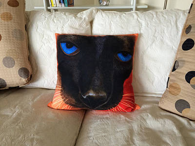Painting - Siamese Pillow by Karen Zuk Rosenblatt