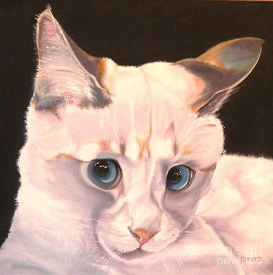 Siamese Rescue - Gem Of A Kitten Original by Susan A Becker