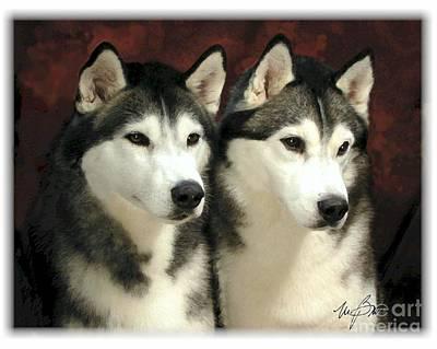 Siberian Husky Digital Art - Siberian Huskies Related by Maxine Bochnia
