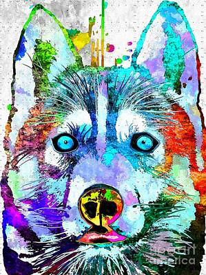 Abstract Of Dogs Mixed Media - Siberian Husky Dog Grunge by Daniel Janda