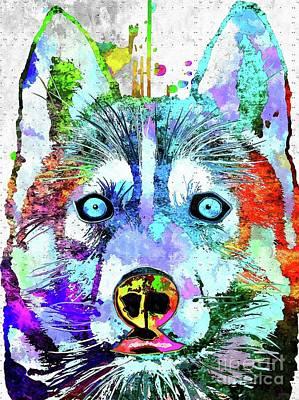 Watercolor Pet Portraits Mixed Media - Siberian Husky Grunge by Daniel Janda