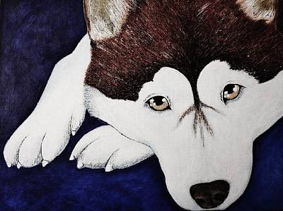 Siberian Husky Drawing - Siberian Husky by Kim Viola