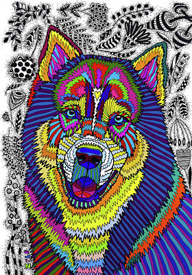 Drawing - Siberian Husky by ZileArt