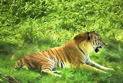 Siberian Tiger Beauty Art Print