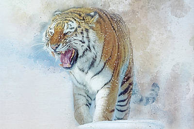 Digital Art - Siberian Tiger In Snow by Brian Tarr