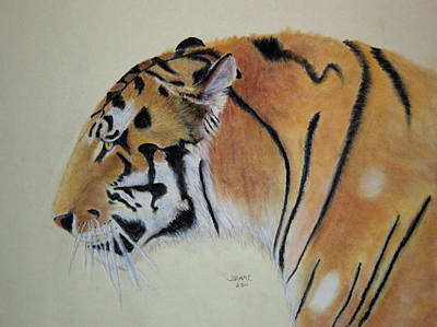 Painting - Siberian Tiger by Joanne Giesbrecht