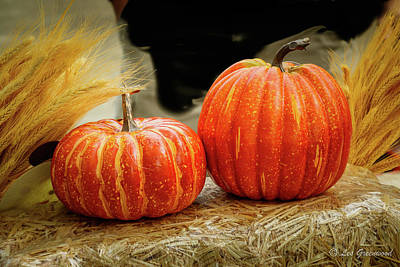 Photograph - Siblings Pumpkins by Les Greenwood