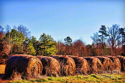 Photograph - Side By Side Hay Rolls by Roberta Byram