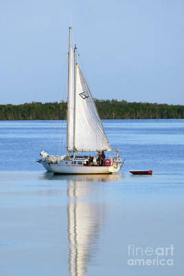 Photograph - Side By Side Sailboats, Key Largo, Florida by Catherine Sherman