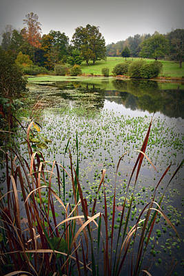 Connemara Digital Art - Side Lake View by Gary Conner