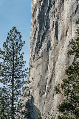Photograph - Side Of El Capitan by Greg Nyquist
