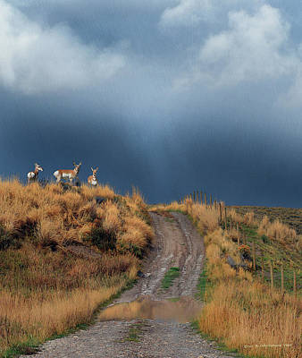 Teton Digital Art - Side Road In Idaho With Pronghorn  by R christopher Vest