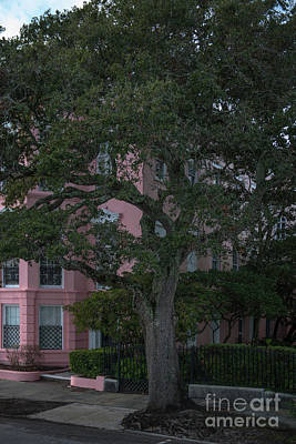 Photograph - Side Walk Strolling In Historic Downtown Charleston South Carolina  by Dale Powell