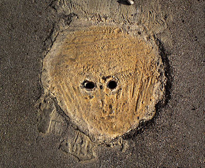 Photograph - Sidewalk Alien by Ed Meredith