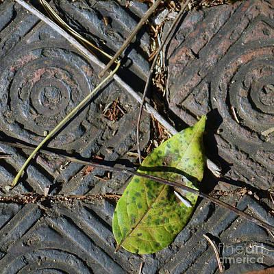 Photograph - Sidewalk Art by PJ Boylan