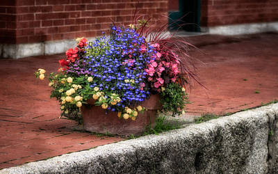 Photograph - Sidewalk Beauty by James Barber