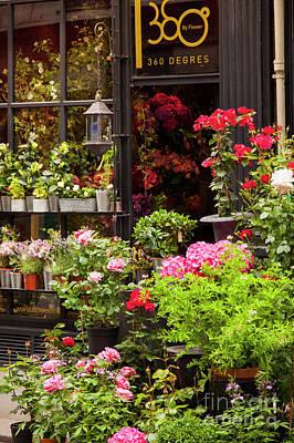 Photograph - Sidewalk Flowers by Brian Jannsen