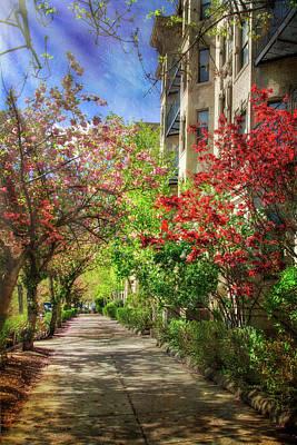 Photograph - Sidewalks In Spring - Back Bay Fens - Boston by Joann Vitali