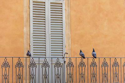 Photograph - Siena 3 Bird Balcony  by John McGraw