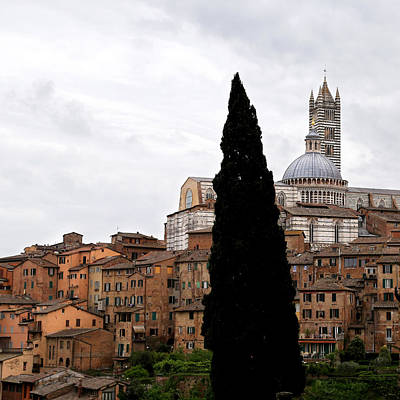 Photograph - Siena Italy 1 by Andrew Fare