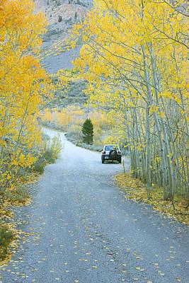 Photograph - Sierra Autumn by Ram Vasudev