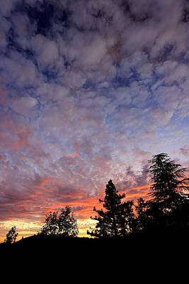 Photograph - Sierra Autumn Sundown by Sean Sarsfield