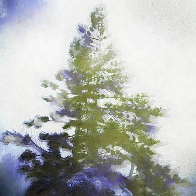 Digital Art - Sierra Book Pines by Richard Ricci
