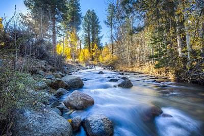 Sierra Mountain Stream Art Print
