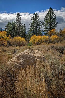 Photograph - Sierra Nevada Fall by Lynn Bauer