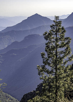Art Print featuring the photograph Sierra Nevada Foothills by Steven Sparks