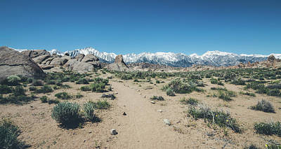 Photograph - Sierra Nevada Trails by Margaret Pitcher