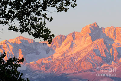 Photograph - Sierra Nevada's by Frank Townsley