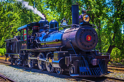 Old West Photograph - Sierra Railway Number 3 by Garry Gay