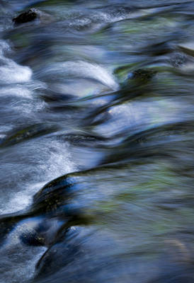 Photograph - Sierra Reflections In Lyell Creek by Joe Doherty