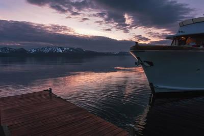 Photograph - Sierra Rose by Laura Macky
