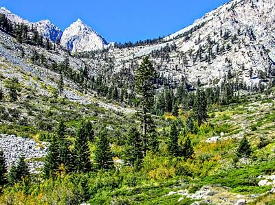 Photograph - Sierra Scenery by Marilyn Diaz
